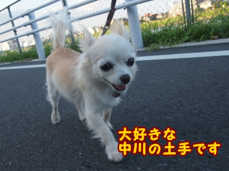 blog8148a.jpg