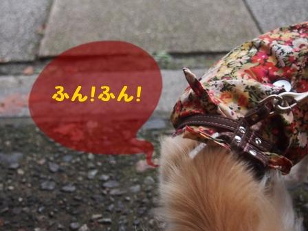 blog8283a.jpg