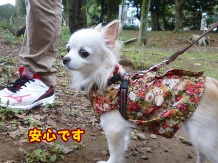 blog8346a.jpg