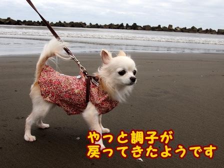 blog8368a.jpg