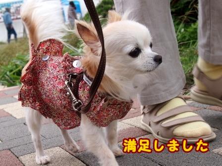 blog8387a.jpg