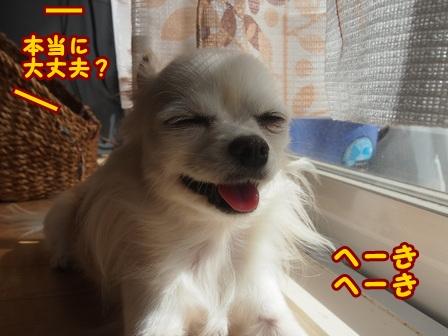 blog8395a.jpg