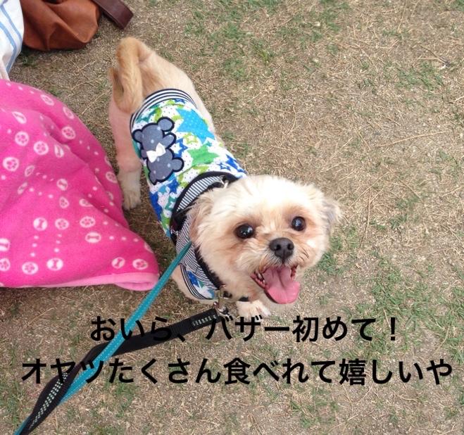 fc2blog_20160530171315dfc.jpg