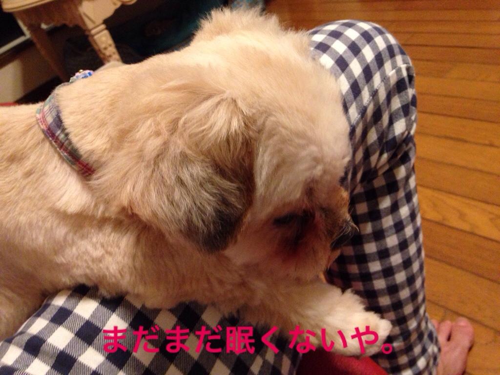 fc2blog_20160629224917320.jpg