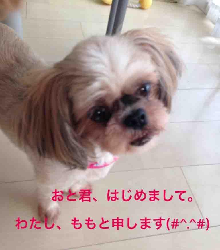 fc2blog_20160902233201072.jpg
