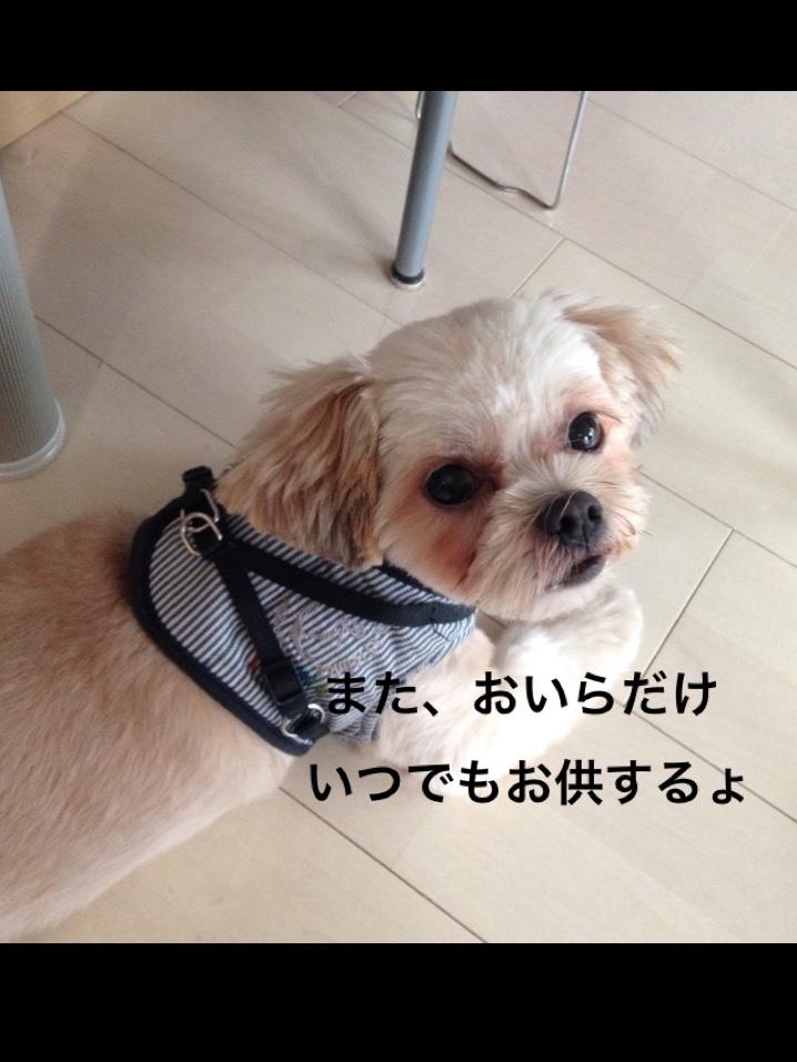 fc2blog_201609030046146ce.jpg