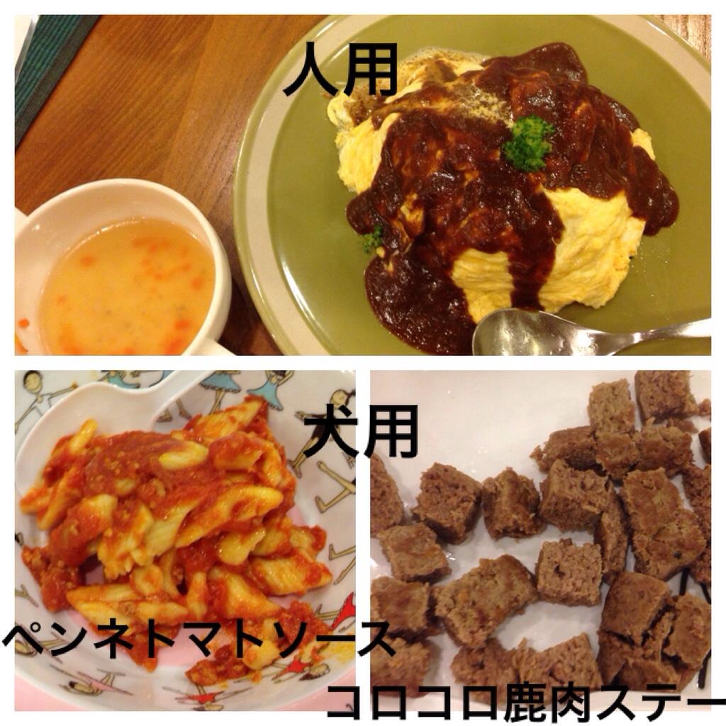 fc2blog_201610212320297a3.jpg