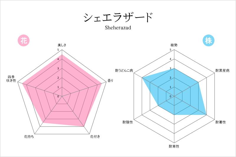 シェエラザード (2)