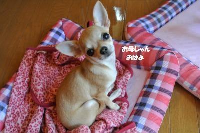 軽井沢29