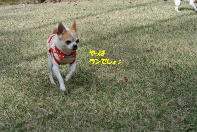 軽井沢37