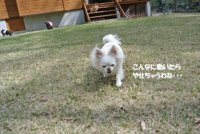 軽井沢39