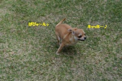 軽井沢46