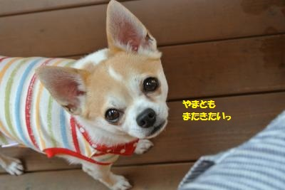 軽井沢53