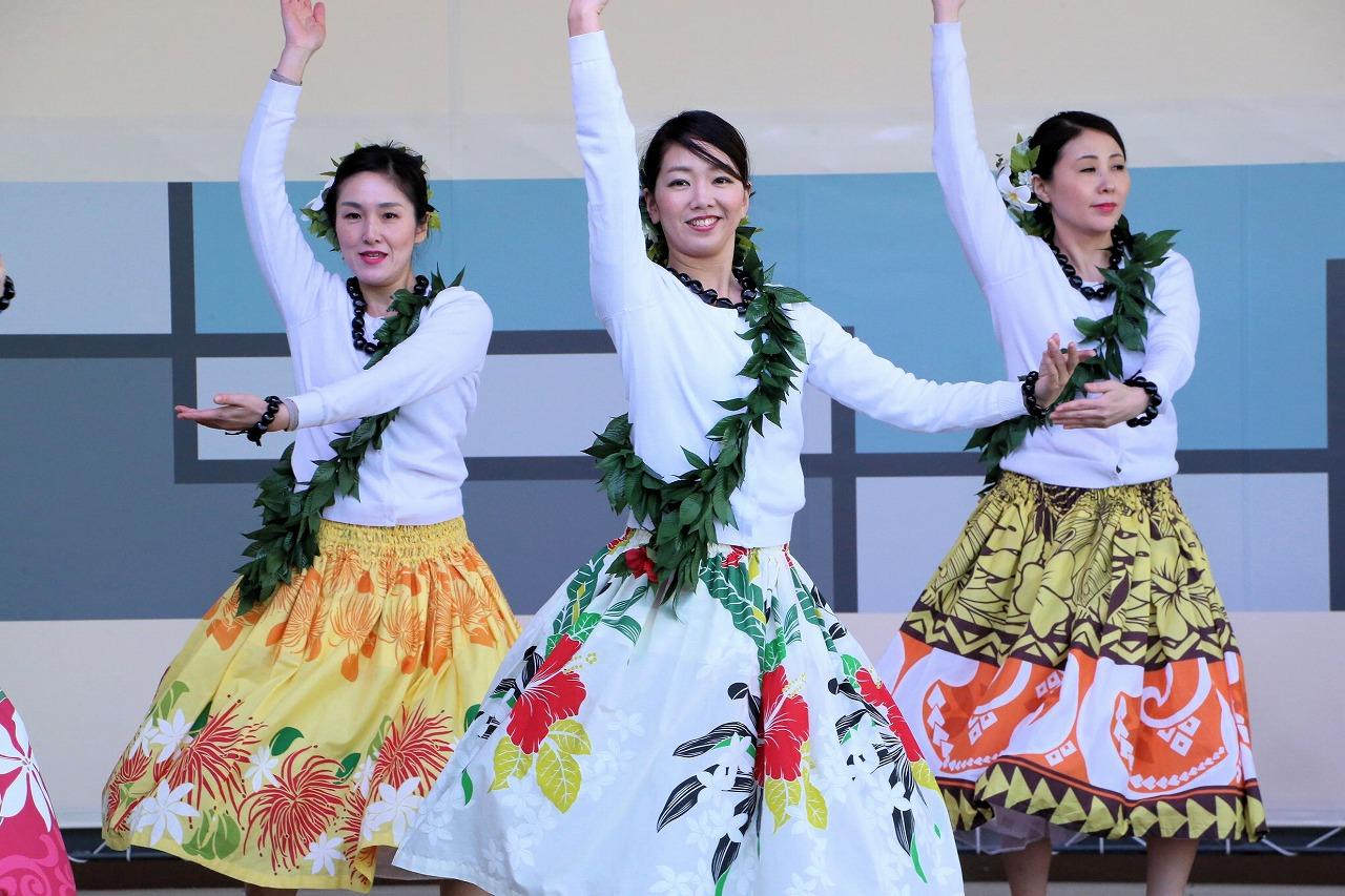 hawaii 28
