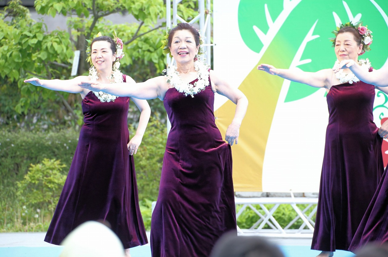 hawaii fes 1-23