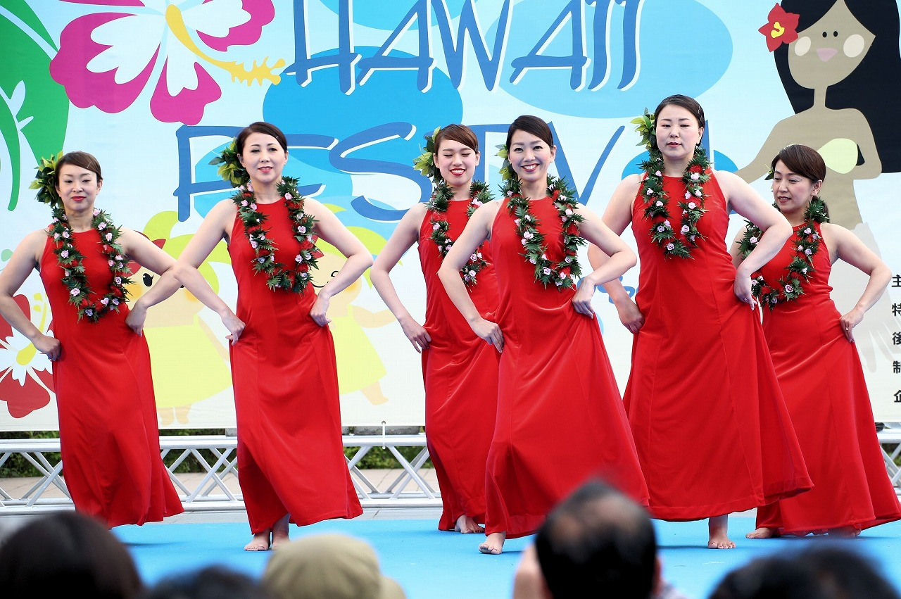 hawaii fes2-2