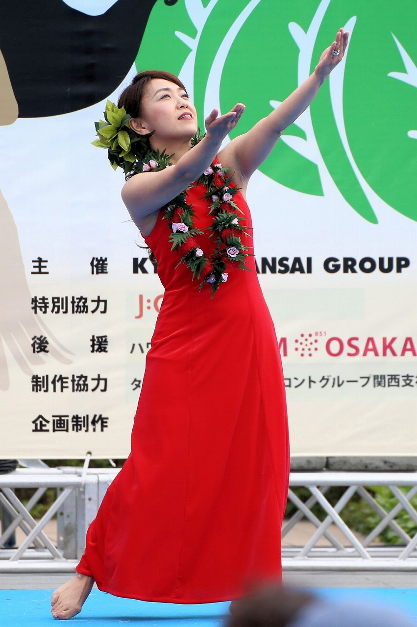 hawaii fes2-8