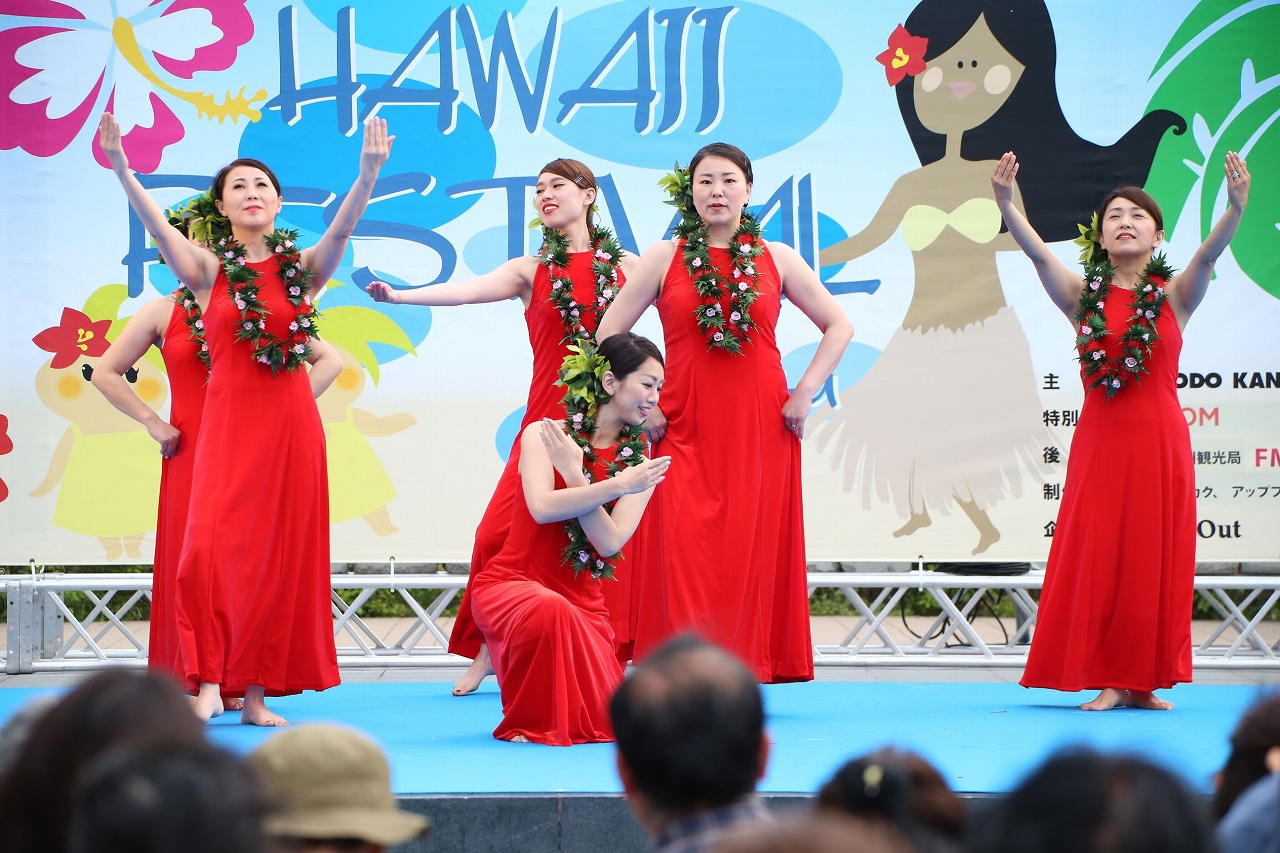 hawaii fes2-10