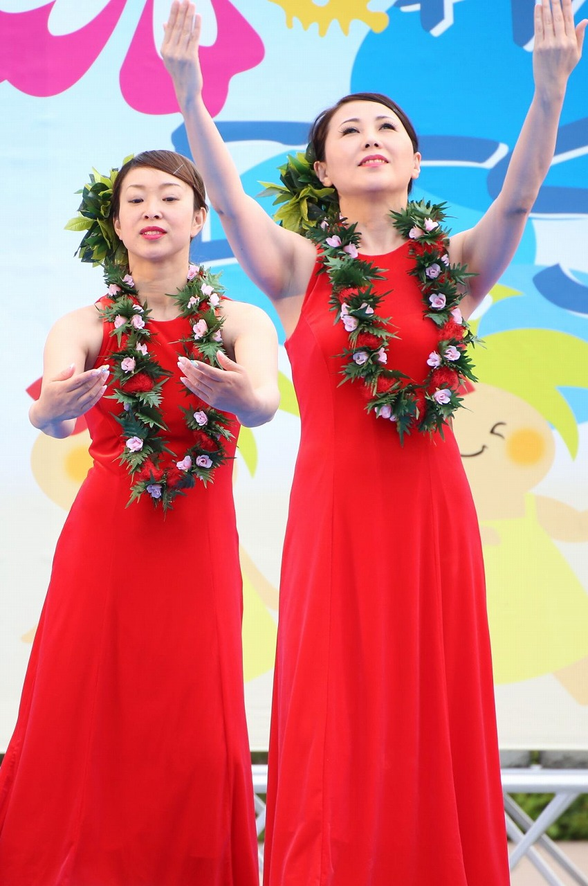 hawaii fes2-12