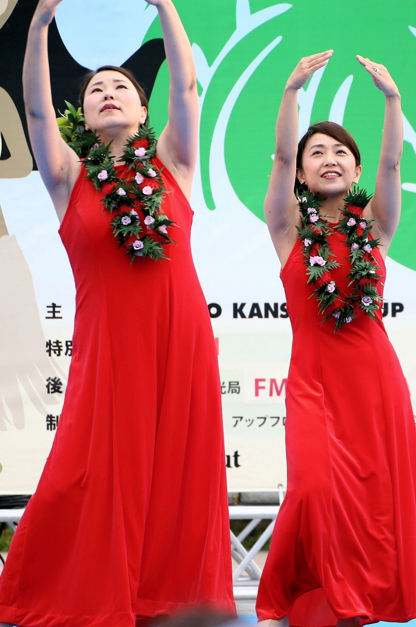 hawaii fes2-16