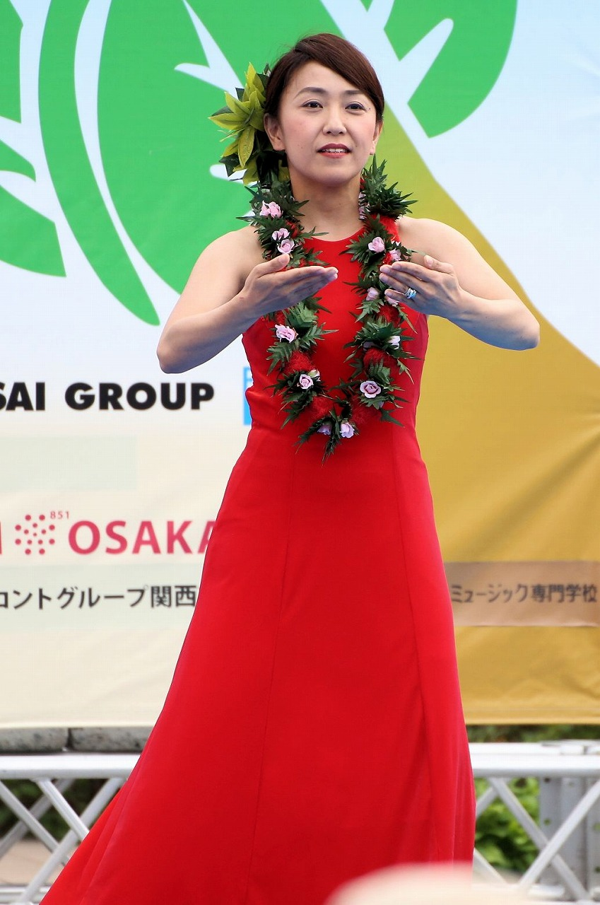 hawaii fes2-17