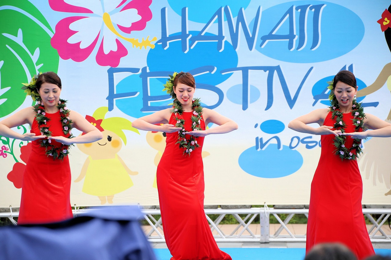 hawaii fes2-20