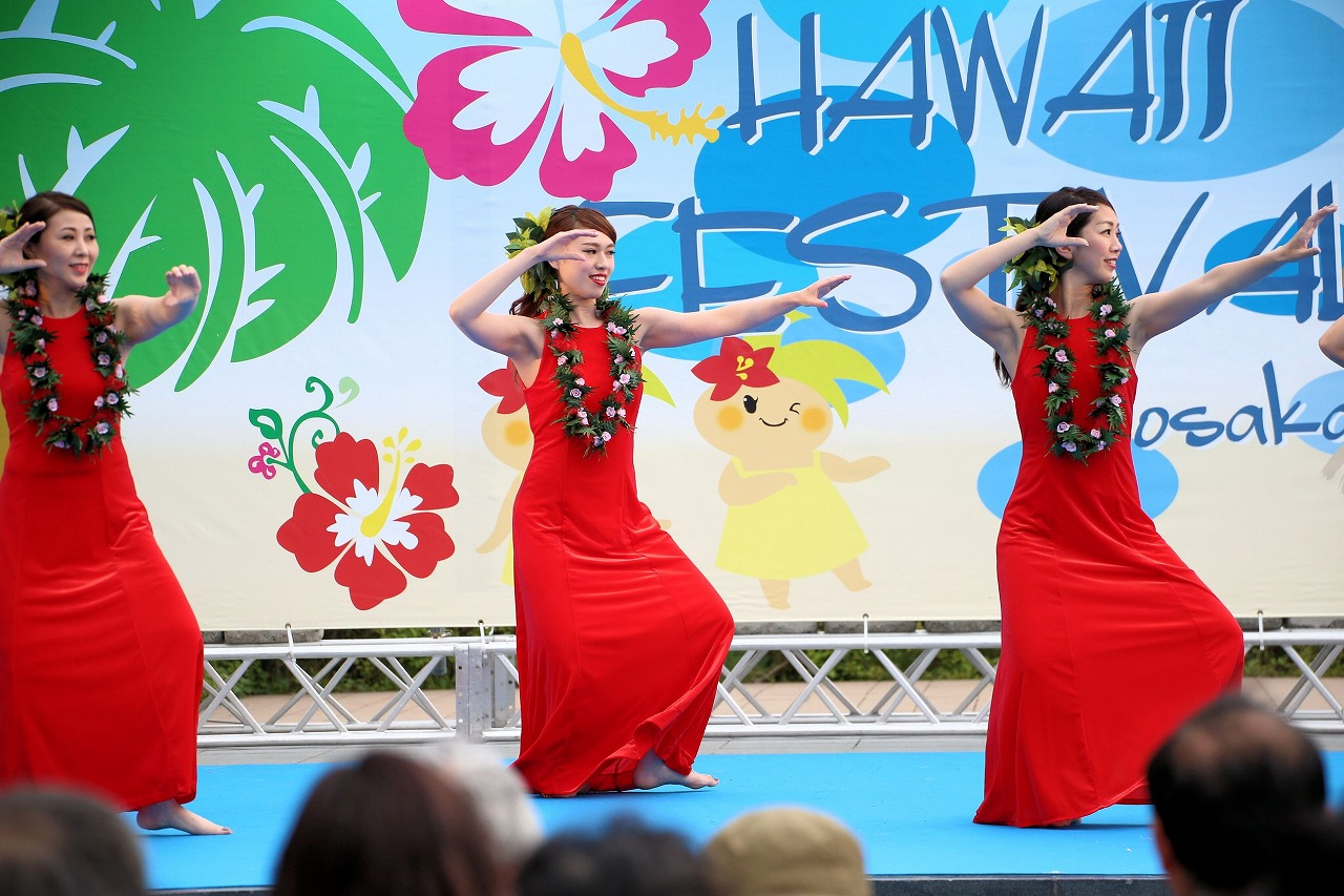 hawaii fes2-24