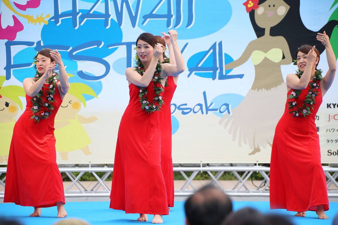 hawaii fes2-28