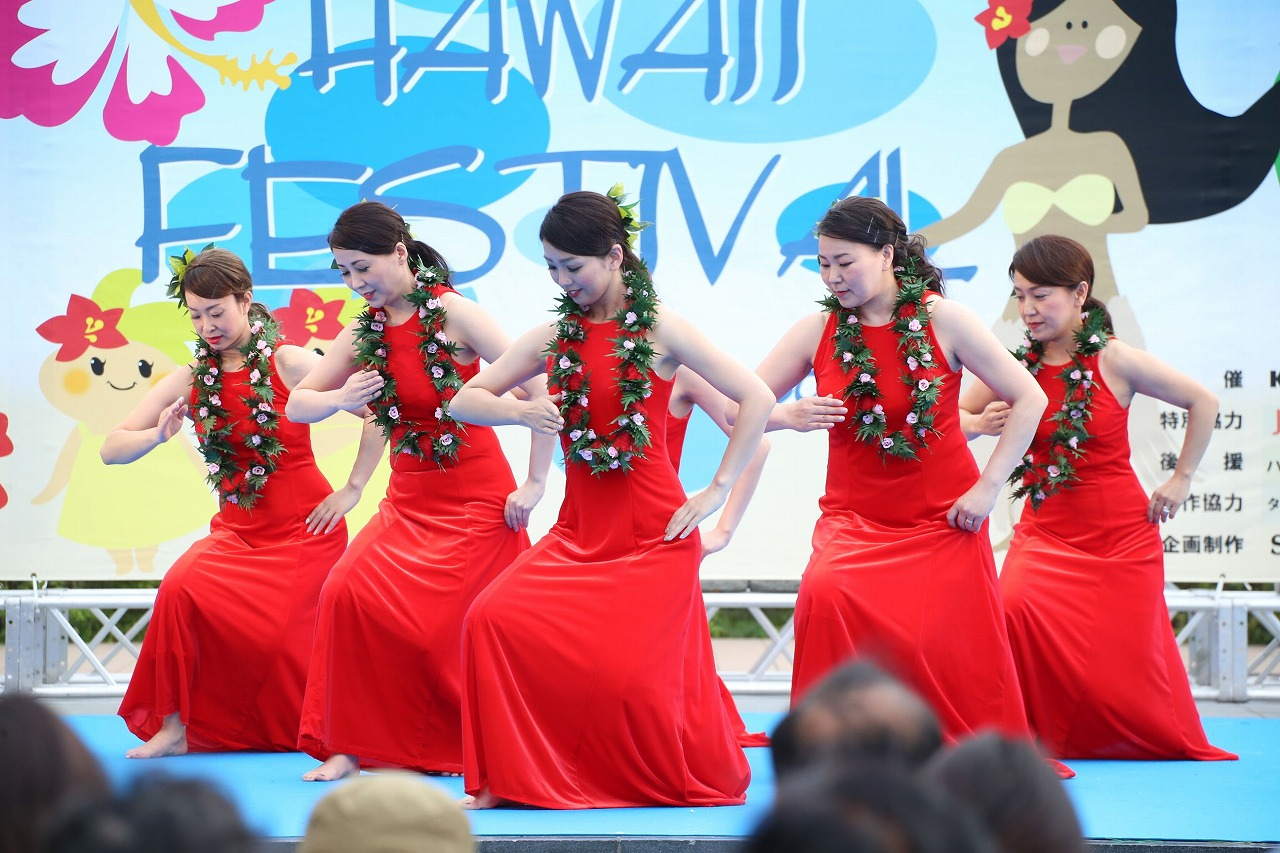 hawaii fes2-31