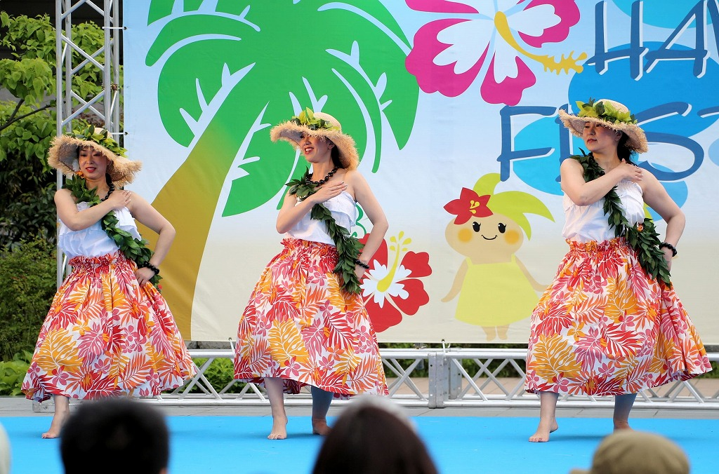 hawaii fes5-2
