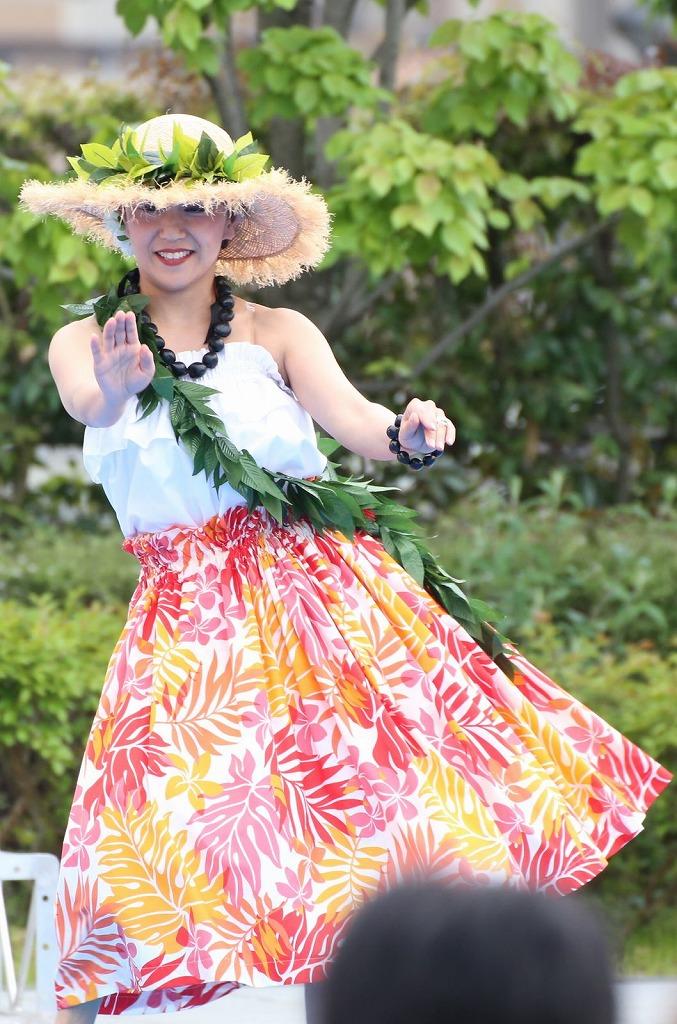 hawaii fes5-4