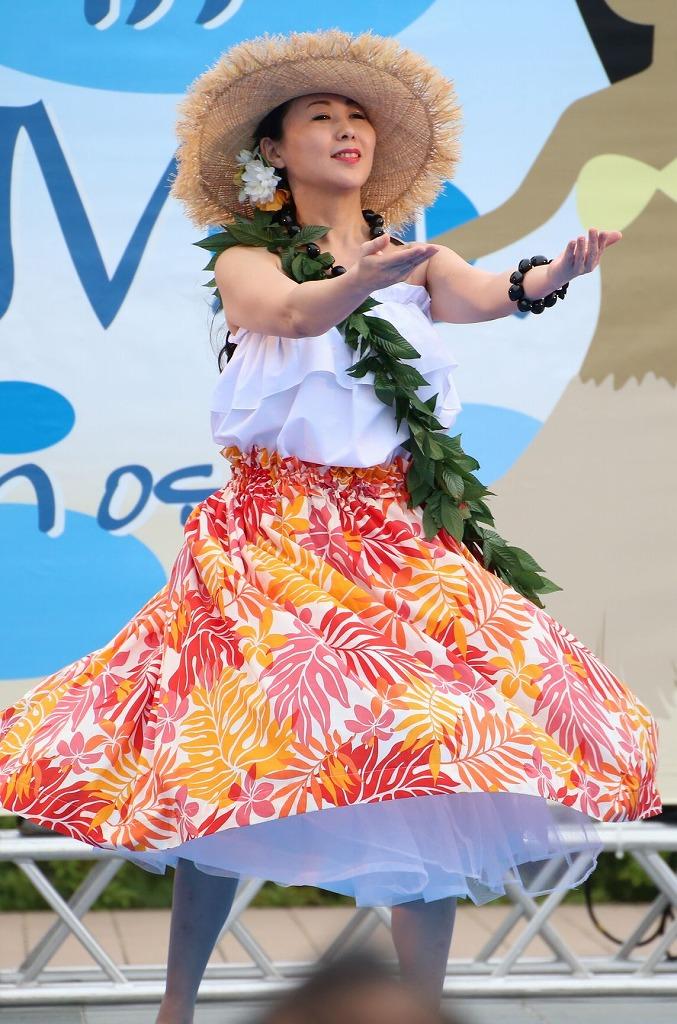 hawaii fes5-5
