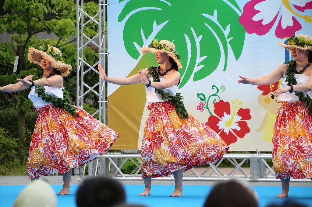 hawaii fes5-6