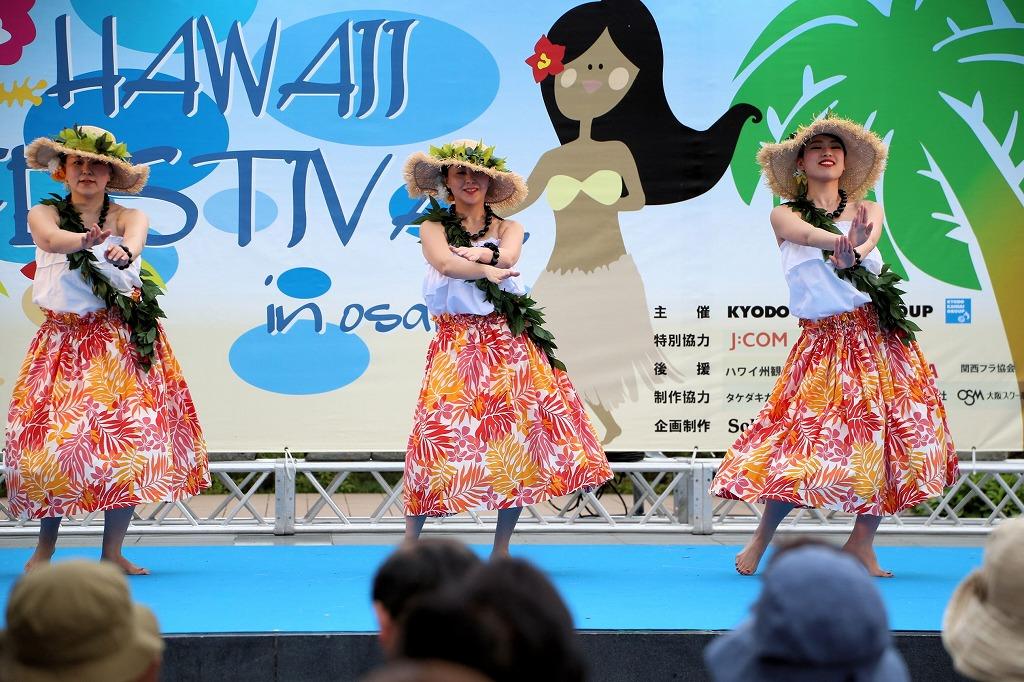 hawaii fes5-10