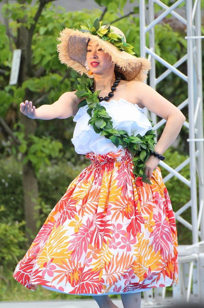 hawaii fes5-12