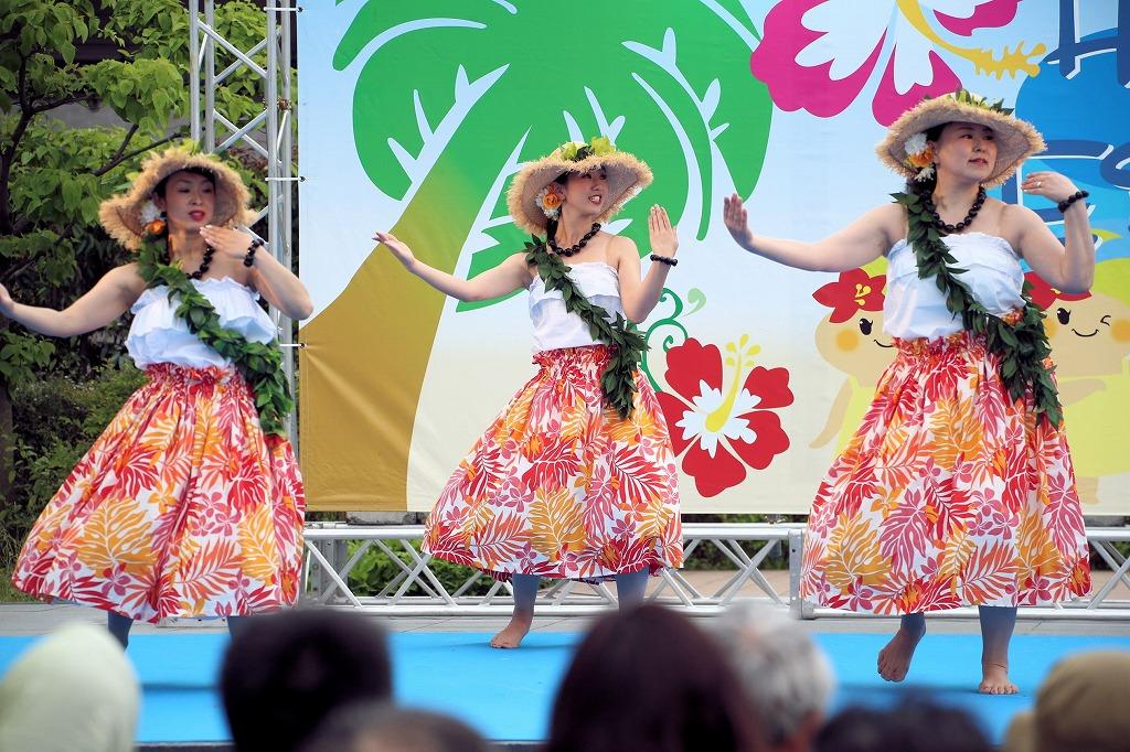 hawaii fes5-17