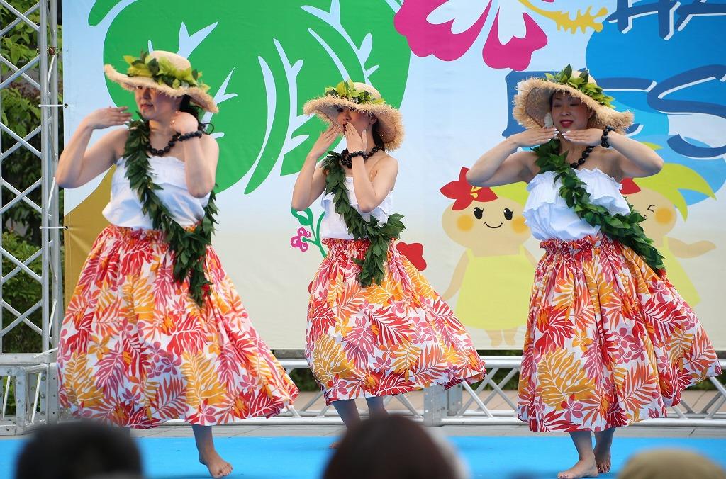 hawaii fes5-19