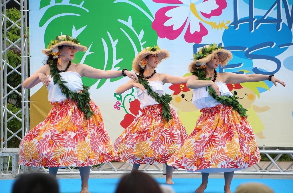 hawaii fes5-20