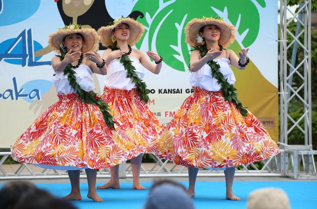 hawaii fes5-21