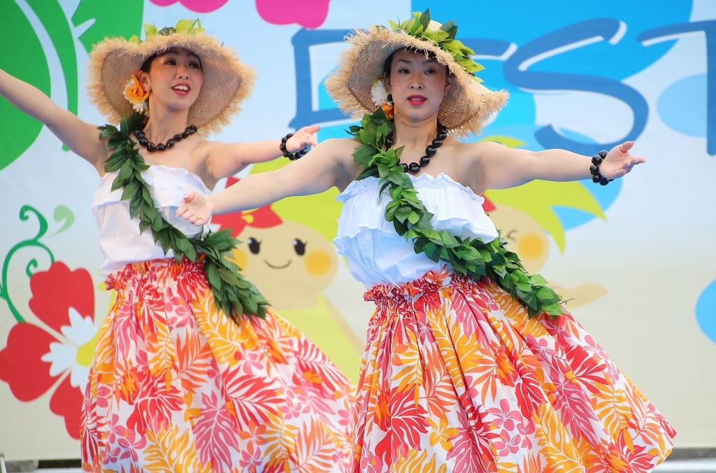 hawaii fes5-24