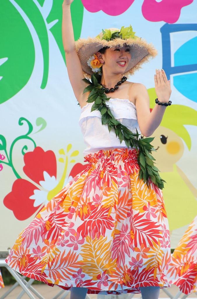 hawaii fes5-25