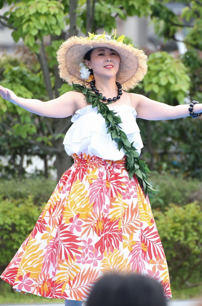 hawaii fes5-30