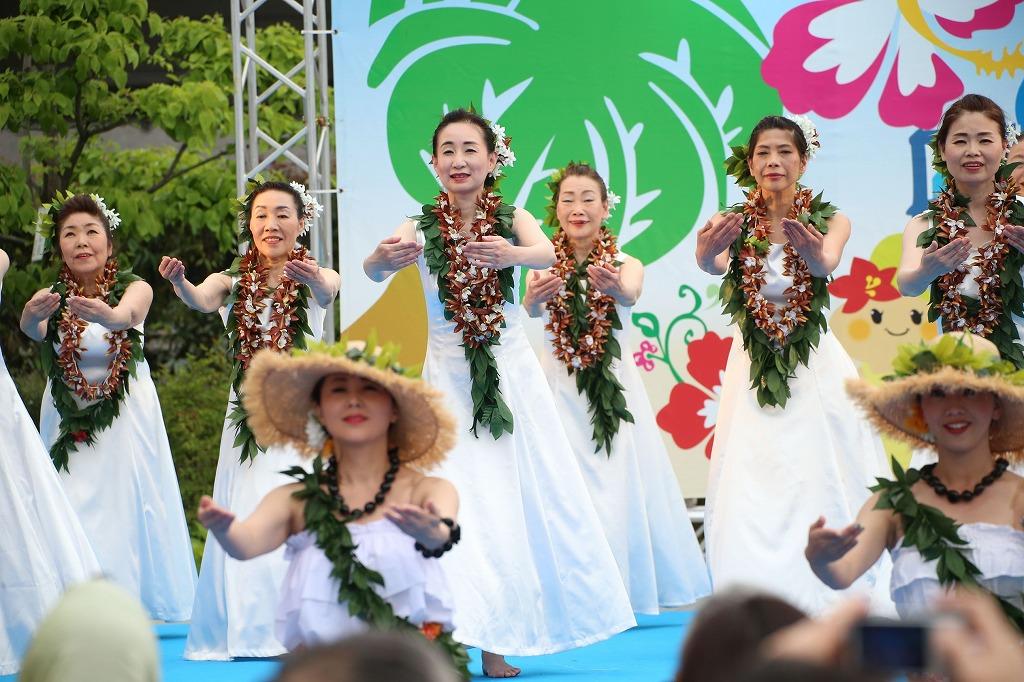 hawaii fes6-4