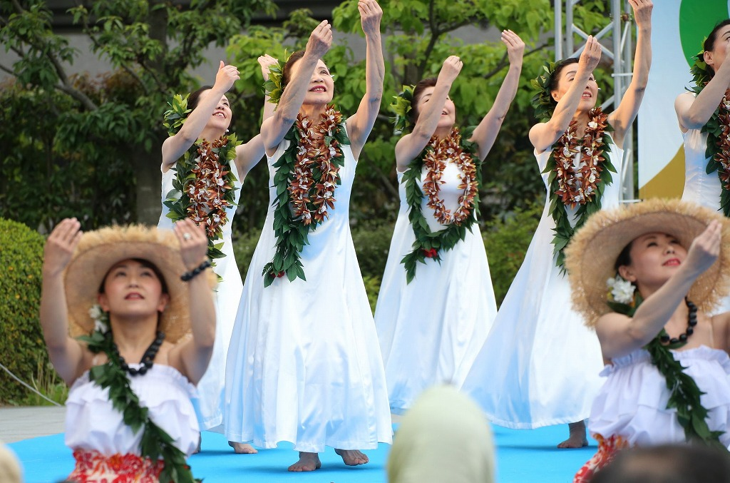 hawaii fes6-5