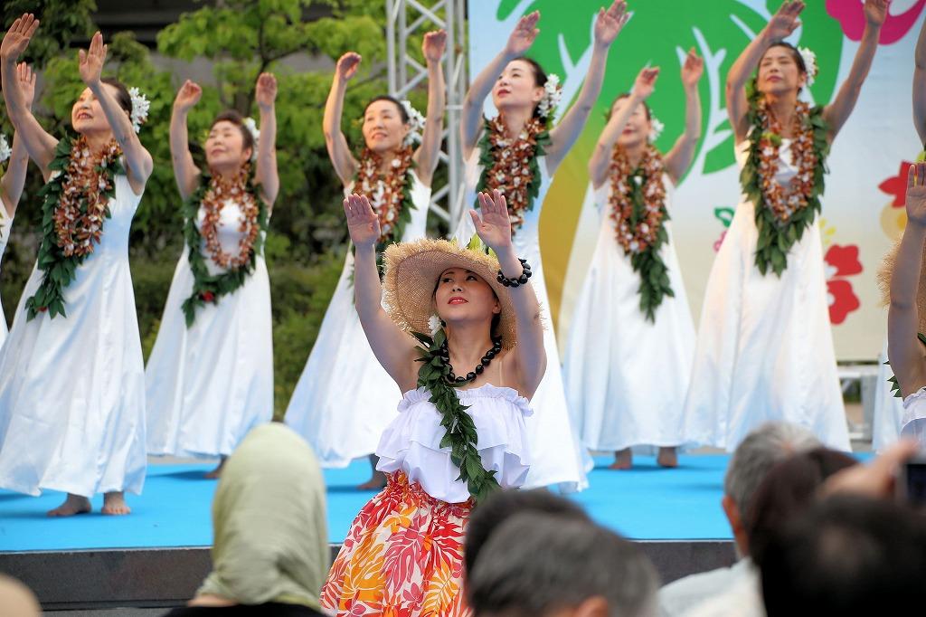 hawaii fes6-6