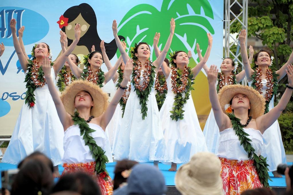 hawaii fes6-9