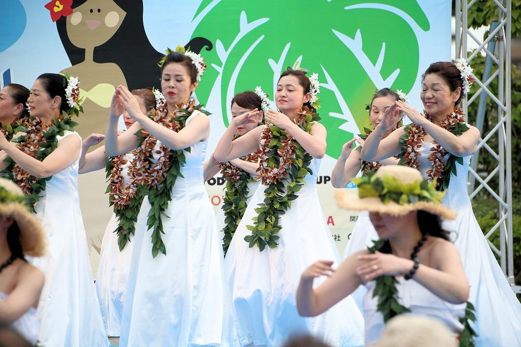 hawaii fes6-11