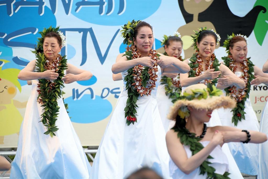 hawaii fes6-13