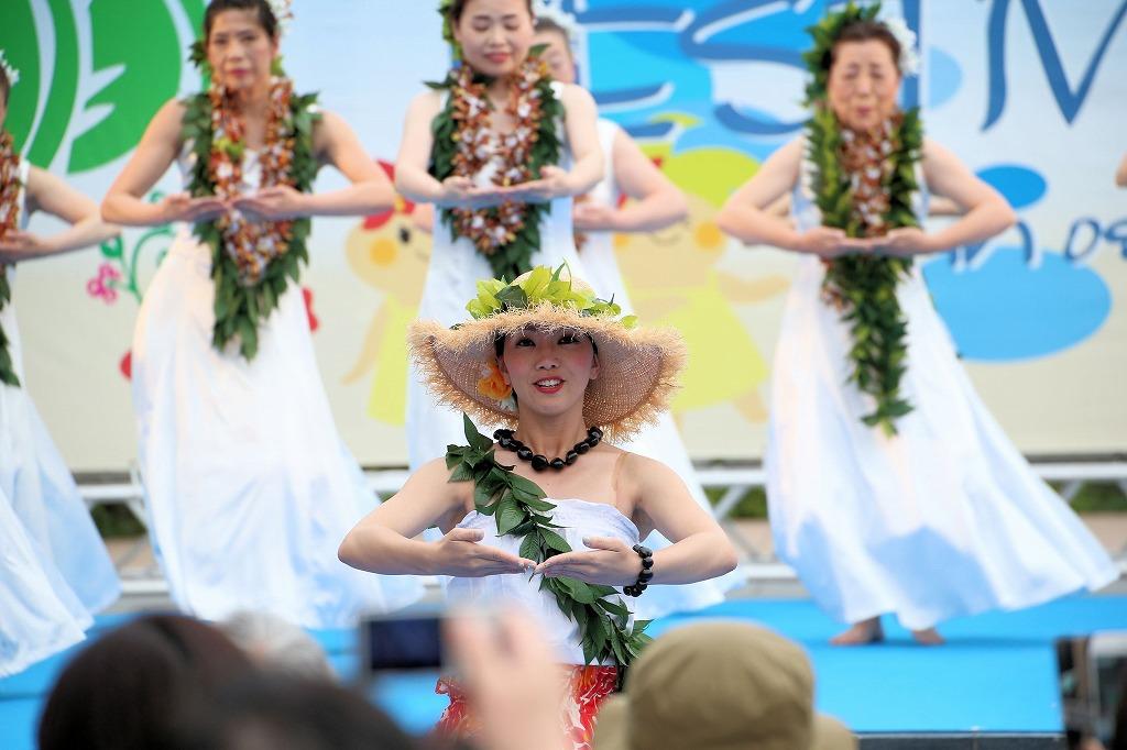 hawaii fes6-14