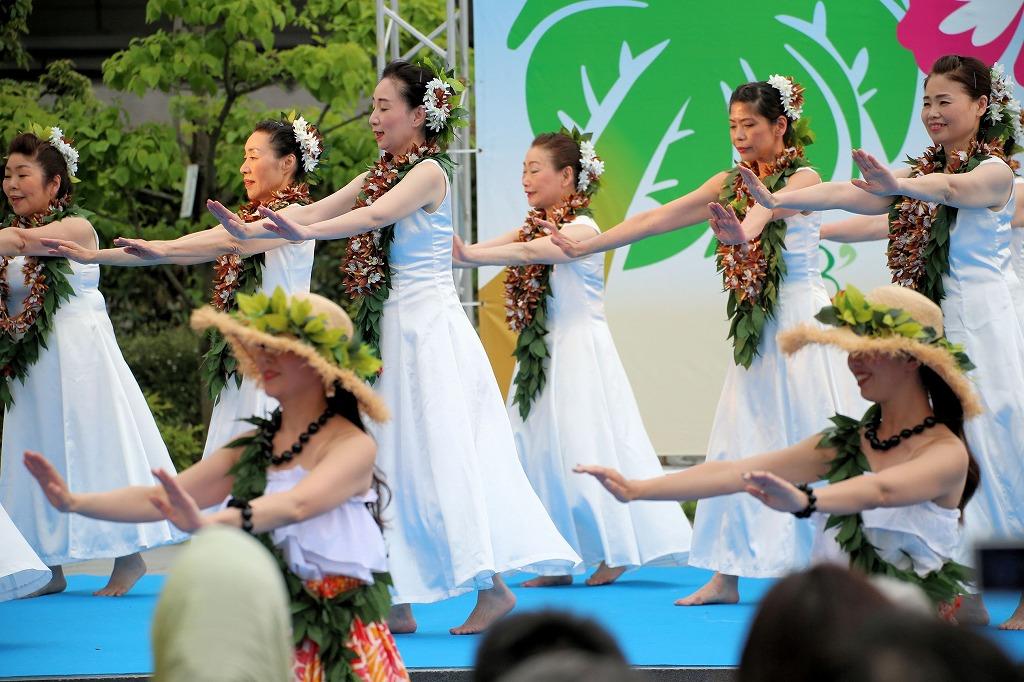 hawaii fes6-15